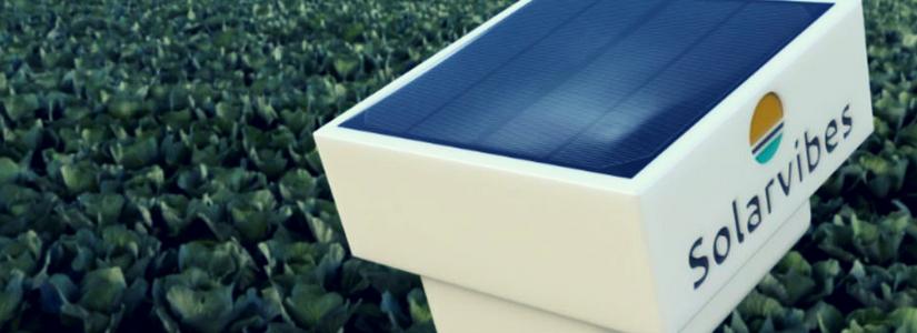 Solarvibes