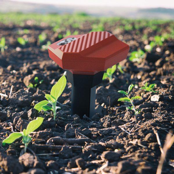 NPK + soil moisture probe